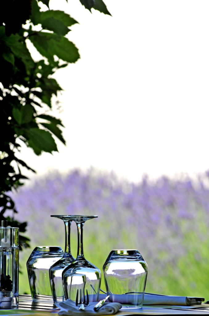 Two upended wine glasses in foreground; lavender fields background