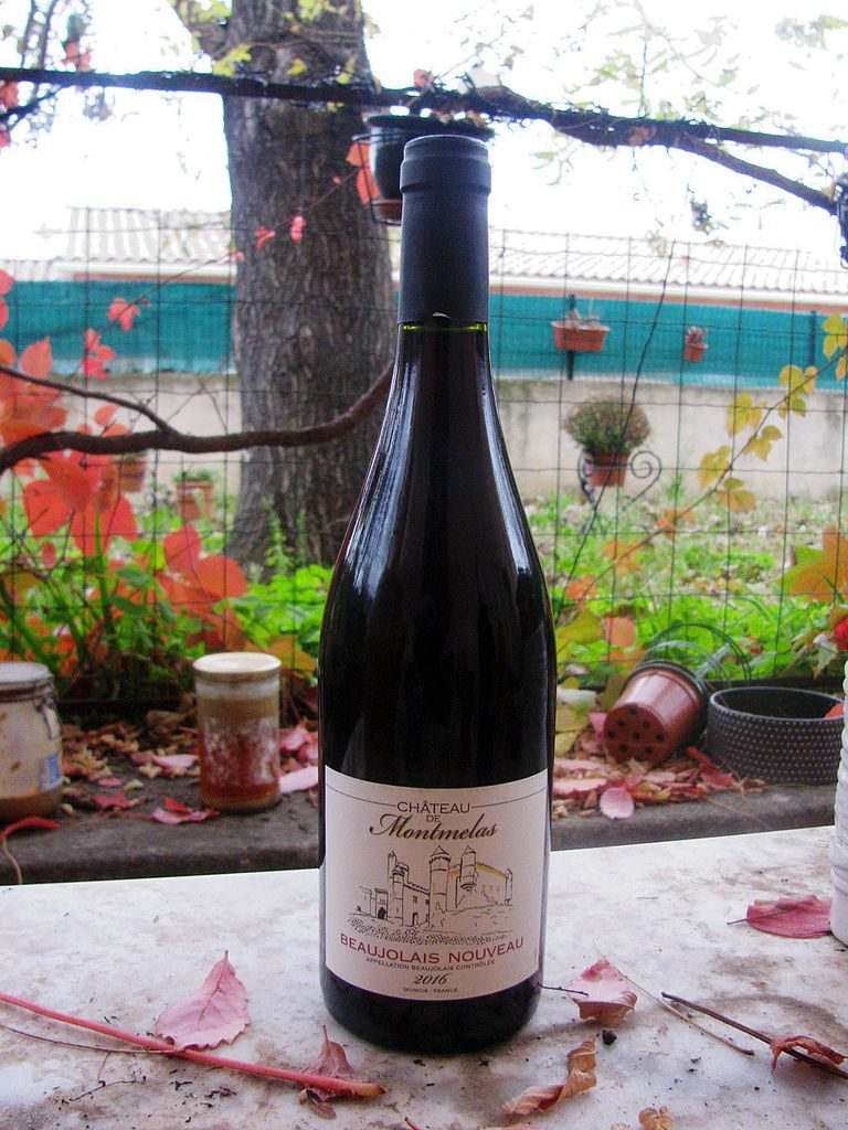 Bottle of Beaujolais Nouveau on table with flowers and vinesin background