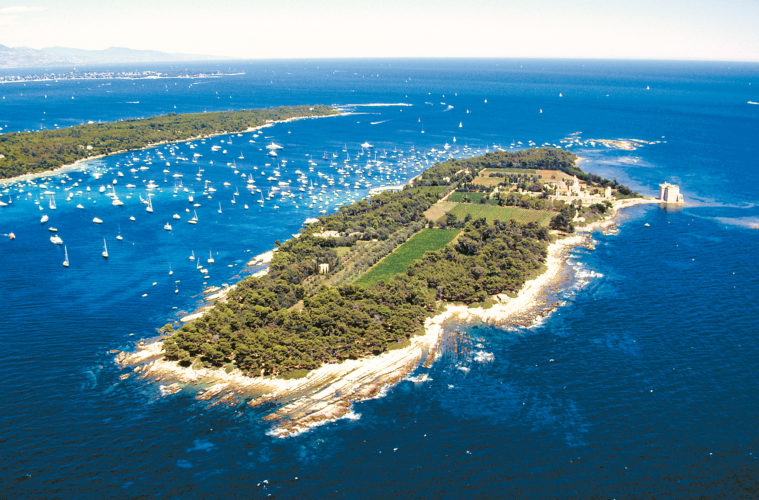Aerial view of Dt Honorat with sea full of yachts