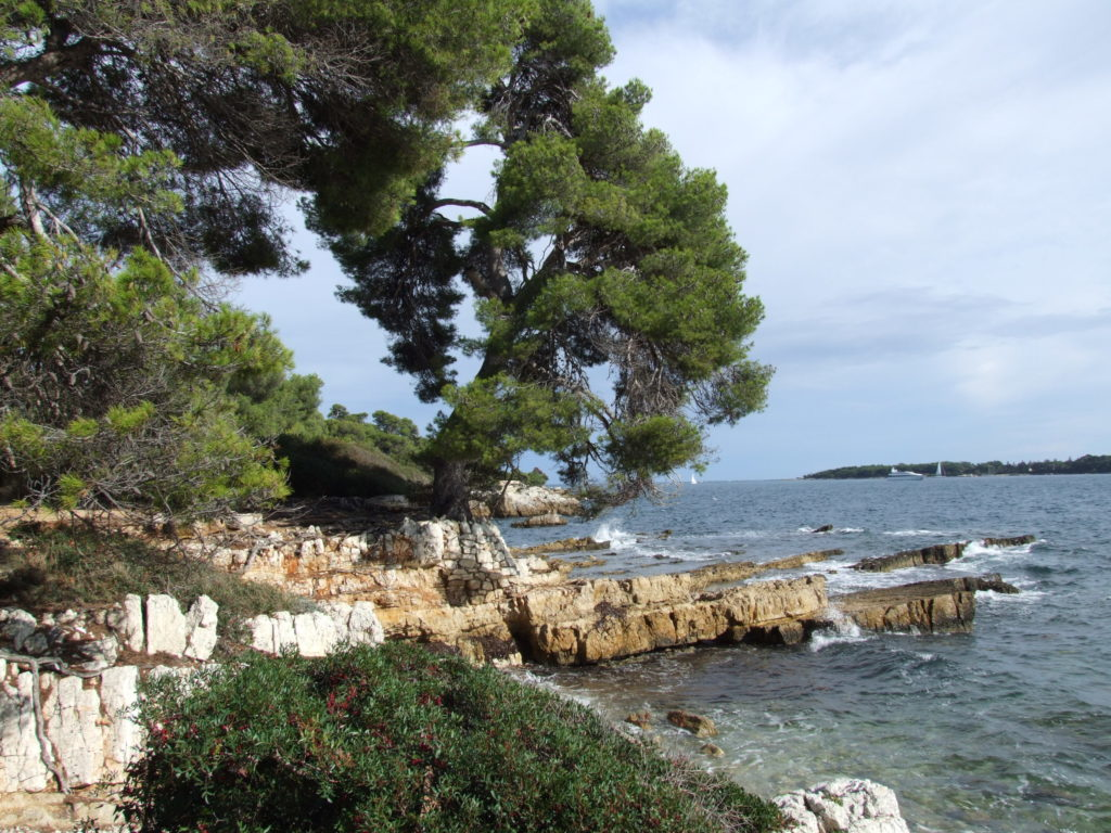 Sainte Marguerite off Cannes sea bay with rocky promonotory and pine trees